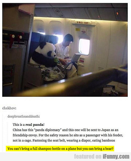 this is a real panda