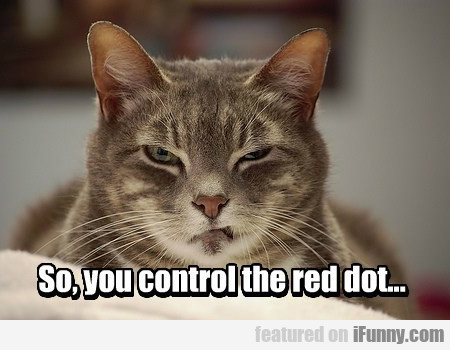 So, You Control The Red Dot...