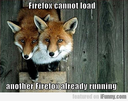 Firefox Cannot Load