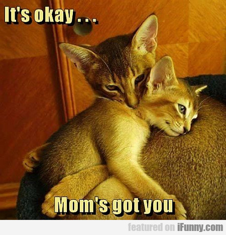 It's Okay... Mom's Got You