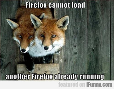 Fire Fox Cannot Load...