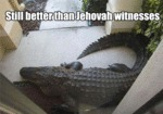 Still Better Than Jehovah Witnesses...
