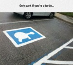Only Park If You're A Turtle...