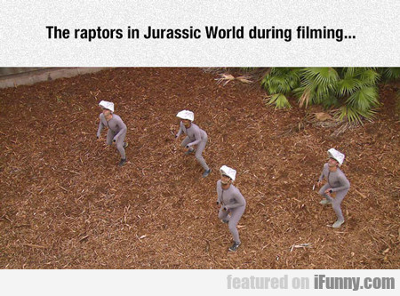 the raptors in jurassic world during filming...