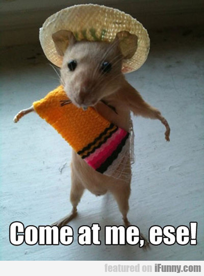 Come At Me Ese...
