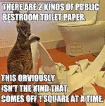 There Are 2 Kinds Of Public Restroom Toilet Paper