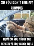 So You Don't Like My Driving...