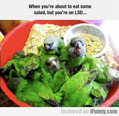 When You're About To Eat Some Salad...