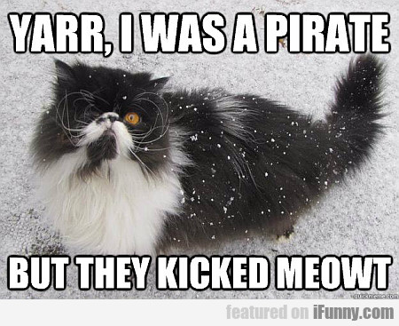 Yarr, I Was A Pirate