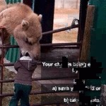 Your Child Is Being Eaten By A Camel. You...