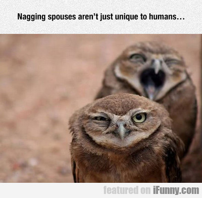 Nagging Spouses Aren't Unique....