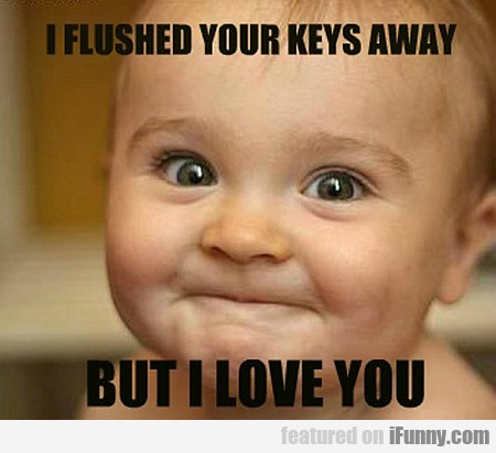 I Flushed Your Keys Away