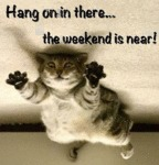 Hang On In There... The Weekend Is Near!