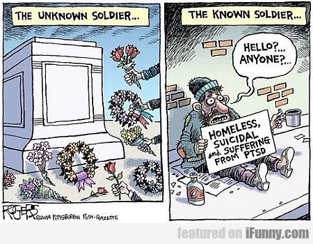 The Unknown Soldier... And The Known Soldier...