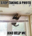 Stop Taking A Photo