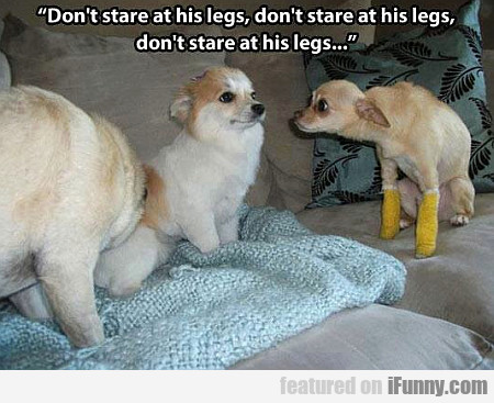 don't stare at his legs!