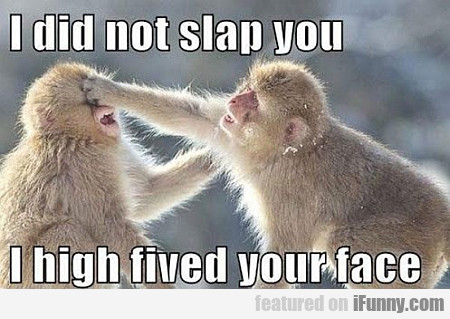I Did Not Slap You