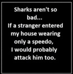 Sharks Aren't So Bad...