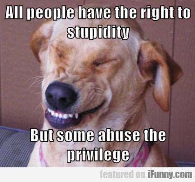 All People Have The Right To Stupidity