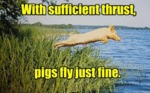 With Sufficient Thrust Pigs.