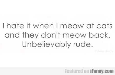 i hate it when i meow at cats...