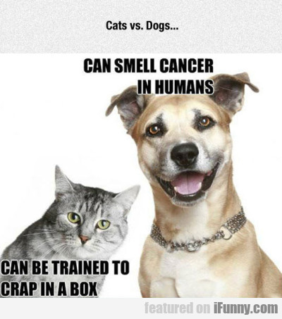 Cats Vs Dogs Can Smell Cancer