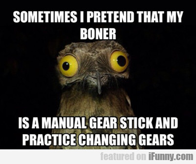 Sometimes I Pretend That My Boner...