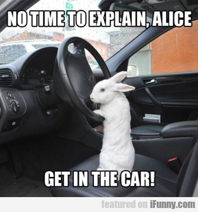 No Time To Explain, Alice...
