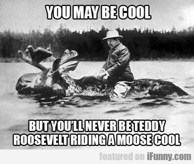 You May Be Cool, But You Will Never Be Teddy...