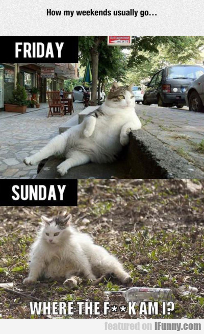 How Many Weekends Usually Go.