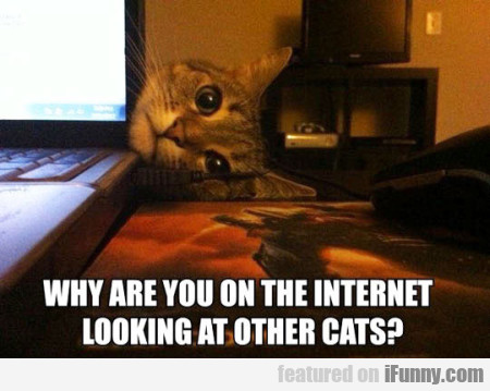 Why Are You On The Internet Looking At Other