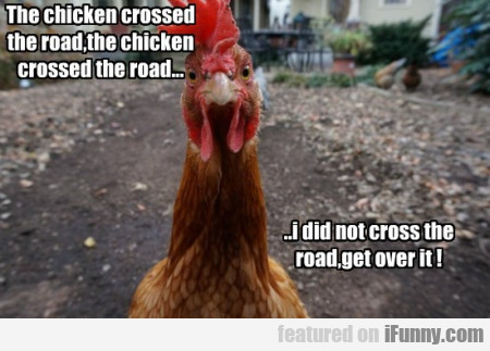 The Chicken Crossed The Road The Chicked Crossed