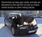 Remember As Days Get Colder...
