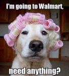 I M Going To Walmart Need
