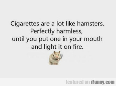 Cigarettes Are A Lot Like Hamsters.