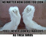 No Matter How Good You Look...