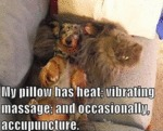 My Pillow Has Heat Vibrating