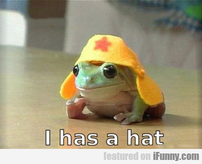 I Has A Hat...