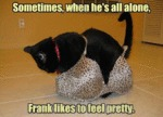 Sometimes, When He's All Alone, Frank Likes To...