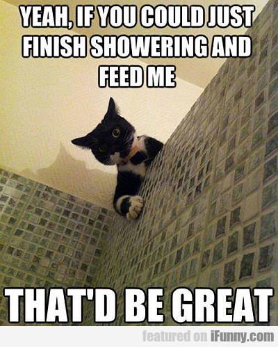 yeah, if you could just finish showering...