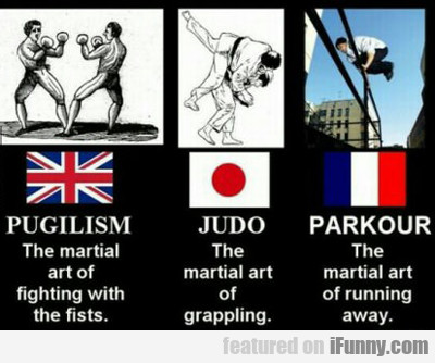 pugilism, the martial arts of fighting with...
