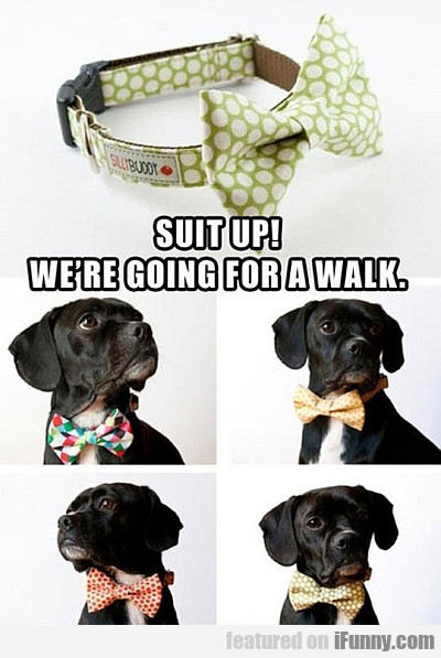 Suit Up! We're Going For A Walk