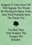 Imagine If Trees Gave Off Wifi...