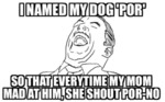 I Named My Dog Por...