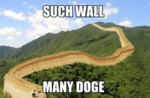 Such Wall, Many Doge...
