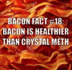 Bacon Fact #18
