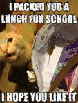 I Packed You A Lunch For School...