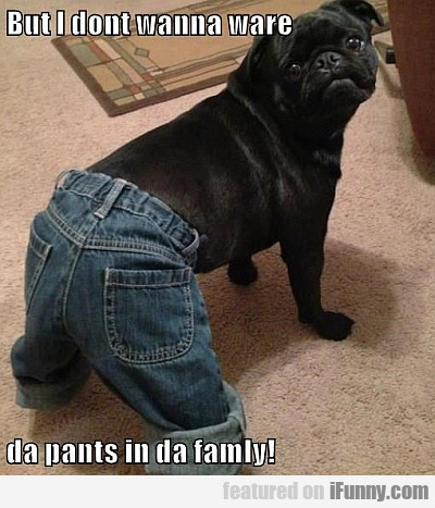 But I Don't Wanna Ware Da Pants In Da Family
