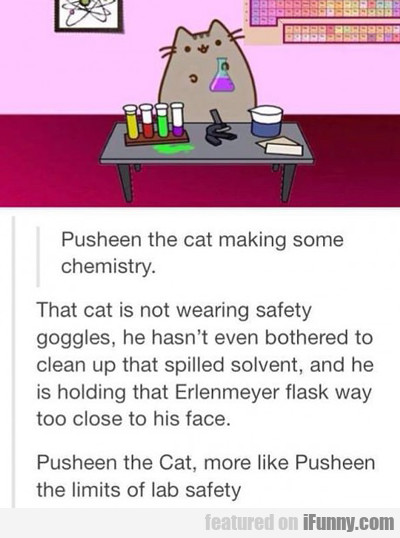 Pusheen The Cat Making...