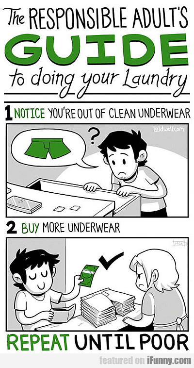 The Responsible Adults Guide To Doing Your Laundry